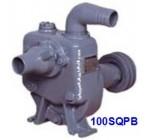 Pompa Ebara SQPB-100