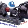 Pompa Showfou PL Series