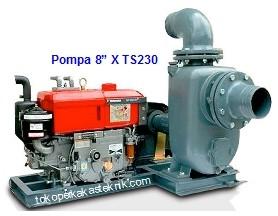 Pompa Yanmar 8 X TS230
