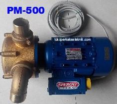 Pompa Solar Speroni PM-500