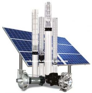 Shakti Solar Pump