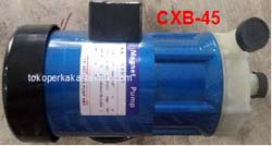 Rotor Magnetic Pump