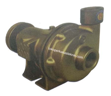 Sea Water Pump PC8000