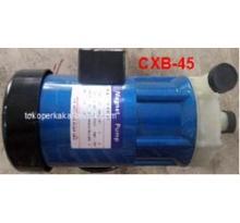 Rotor Magnetic Pump